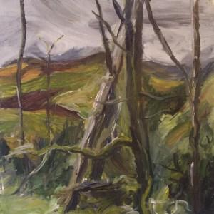 Woodland, Glaspwll