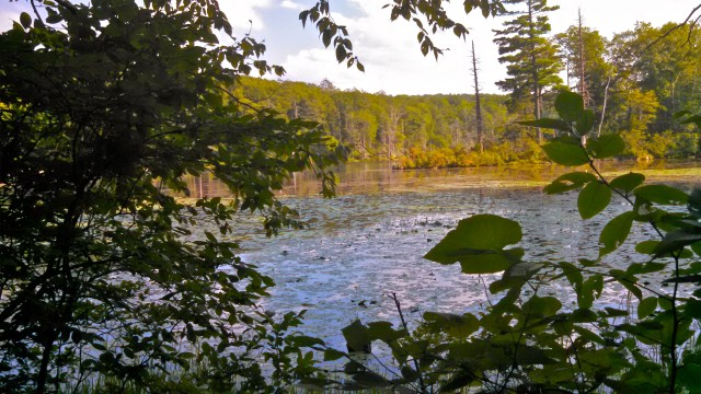 Fahnestock state park 3