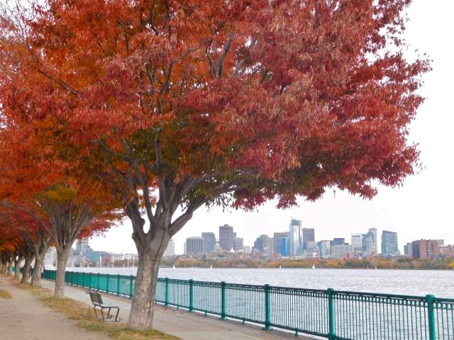 Charles_River_Esplanade_