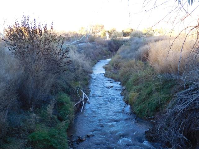 matheson_wetlands_preserve_moab_1