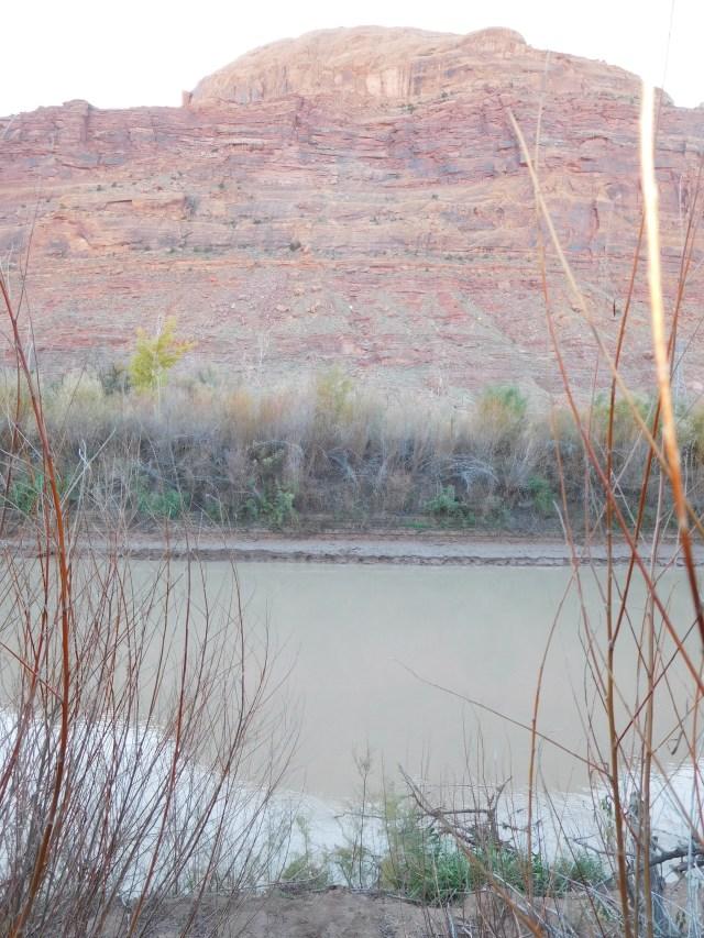 matheson_wetlands_preserve_moab_8