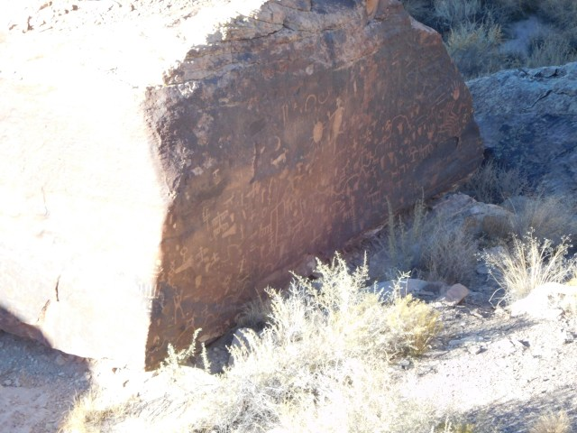 petrified_forest_national_park_newspaper_rock