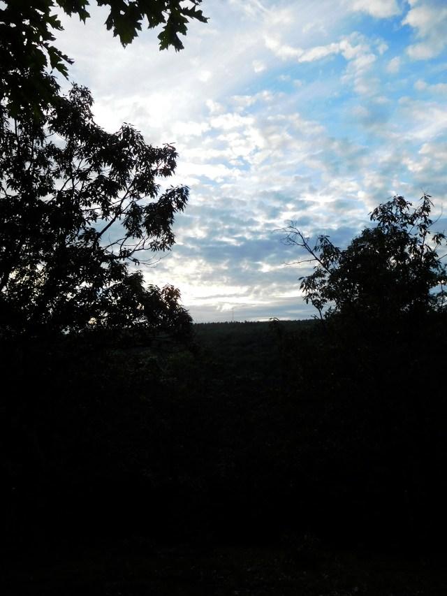 Lawson_Lake_County_Park_albany_3