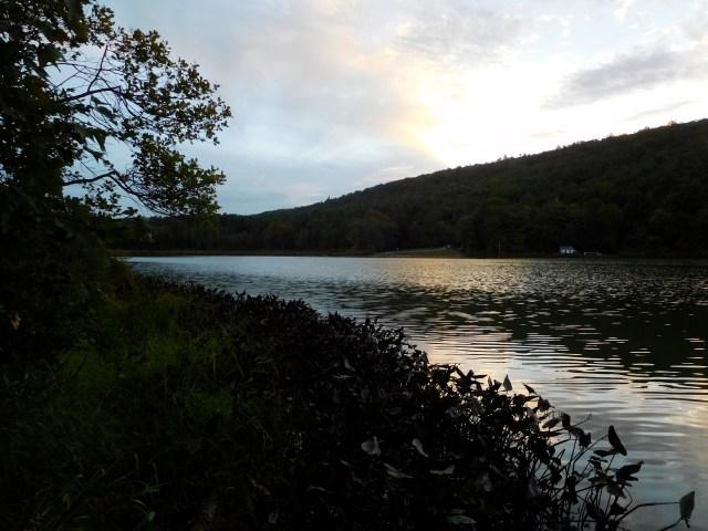 Lawson_Lake_County_Park_albany_7