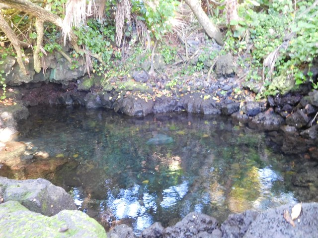 Pohoiki_Hot_Spring_