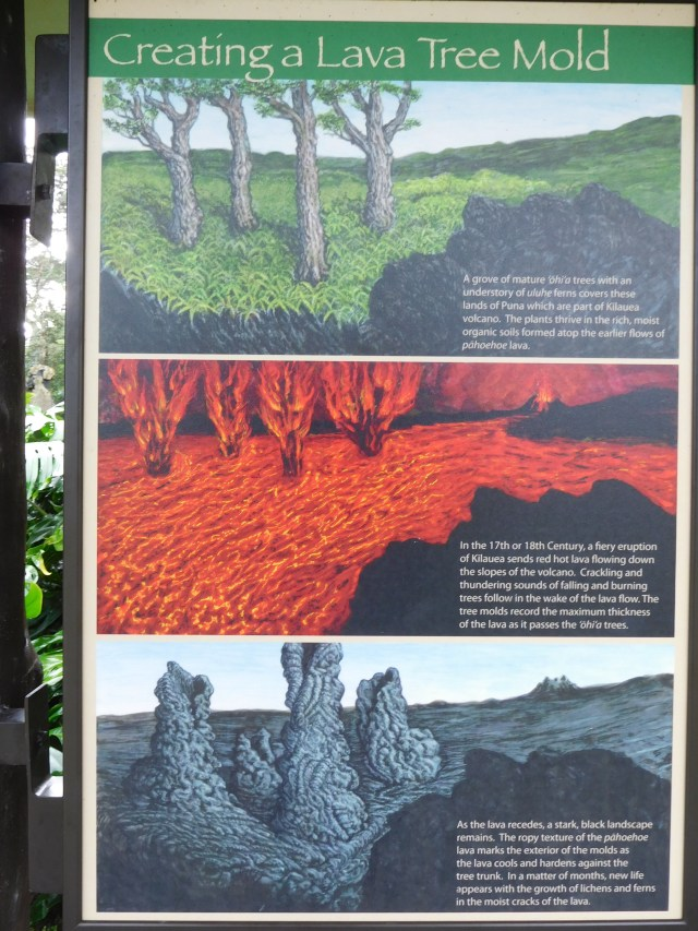 lava_tree_state_park_big_island_