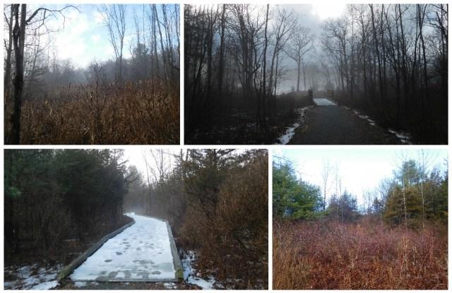 Mohawk_Landing_Nature_Preserve