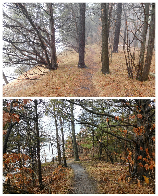 Mohawk_Landing_Nature_Preserve_rexford