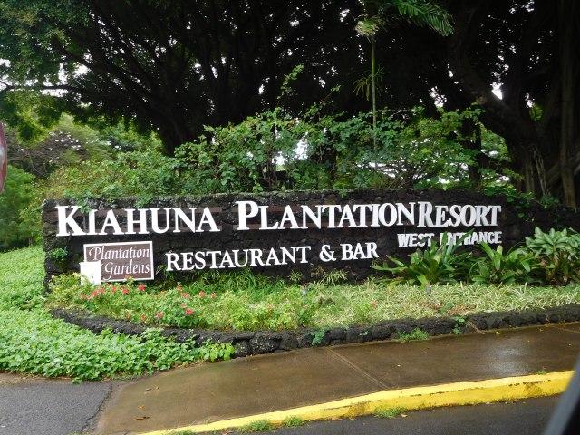 Best Free Gardens of Kauai | Julie Journeys