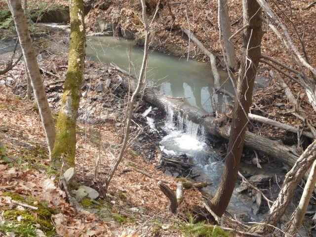 falling_waters_preserve_6
