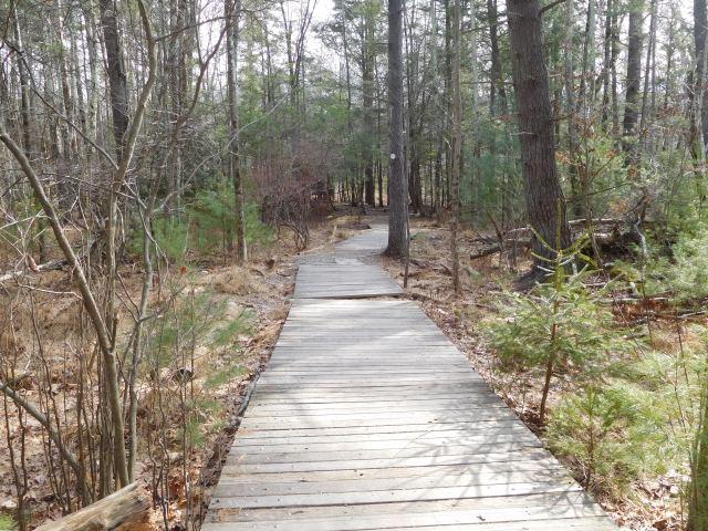 comeau_trail_woodstock_2