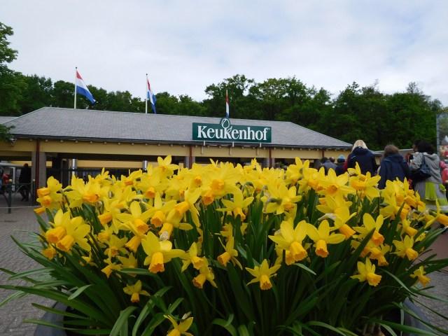 keukenhof_garden_amsterdam_