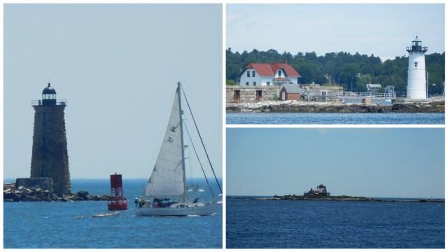 great_island_common_