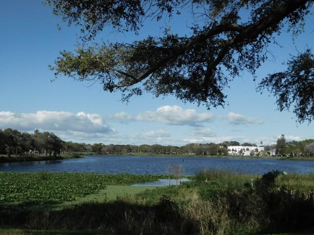 St Petersburg Fl Nature Parks