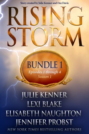 Rising Storm: Bundle 1 - E-Book Cover