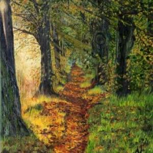 Into the Woods | Oil on Canvas by Julie Lovelock