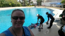 For my birthday we visited the dolphins at the Mirage