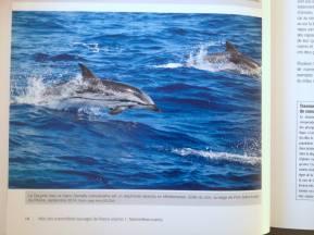 Publication Atlas des Mammifères de France vol.1