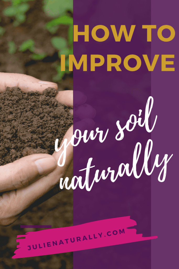 improve your soil by planting cover crops