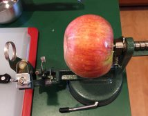apple pressed onto prongs, stern (bottom) lined up aiming for corer hole