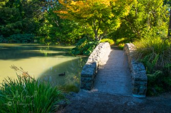 Christchurch Botannical Gardens
