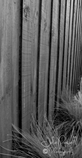 monochrome-fence-2-of-3-e1429585499188