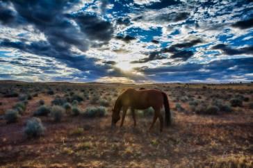 Sunset over Mundi Mundi Plains