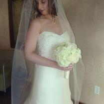 Springs Preserve offers many great wedding locations