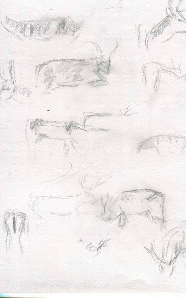 deer-sketch-blog-6