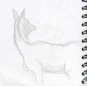 deer-sketch-blog-8