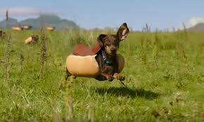 Heinz Hot Dog