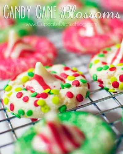 50 Best Christmas Cookies: The Best Christmas Cookie Recipes {50+ Recipes!!}