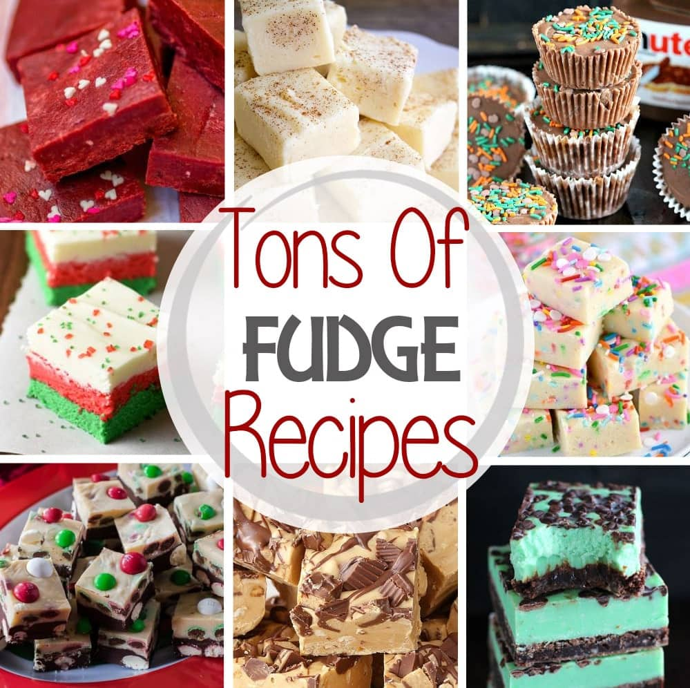 The Best Fudge Recipes! Easy Fudge Recipes Perfect for the Holidays. Everything from Eggnog, Peanut Butter, Gingerbread, Chocolate and More!
