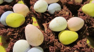 Chocolate Robin's Nests