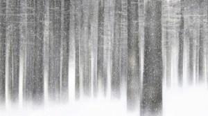 Hope Falls in Winter ~ Part 1