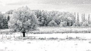 Hope Falls in Winter ~ Part 2