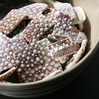 Sea urchin pieces