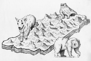 Glacier Illustration