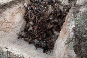 negros asesinados en libia 1