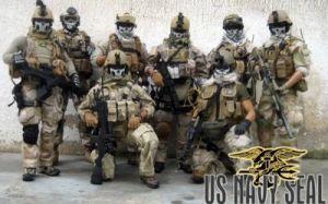seal-team-6 - Foto: voltairenet
