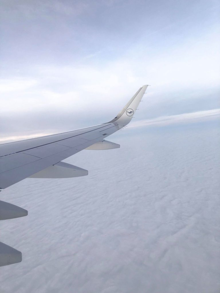 during the flight