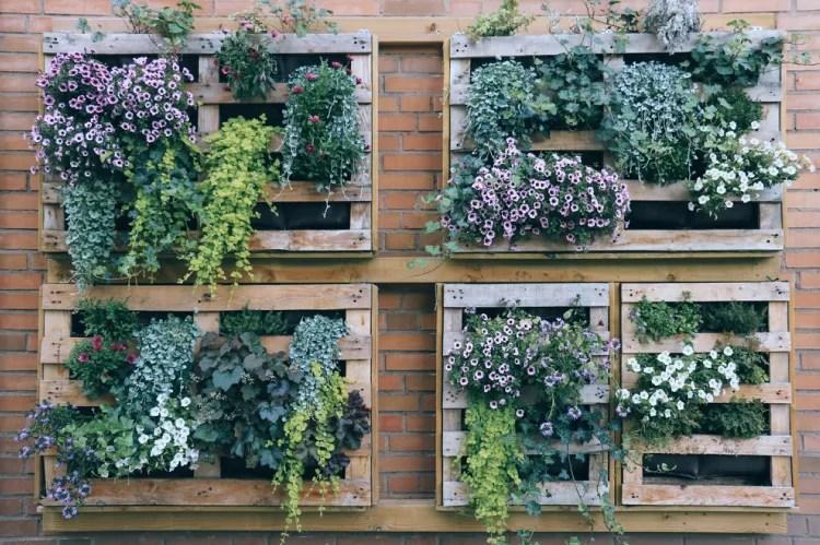 5 Creative Diy Ideas To Grow A Vertical Garden