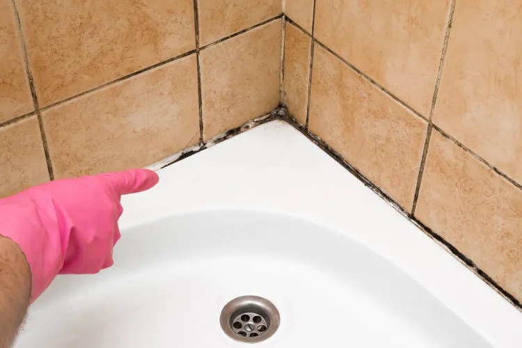 clean water stains and grout lines