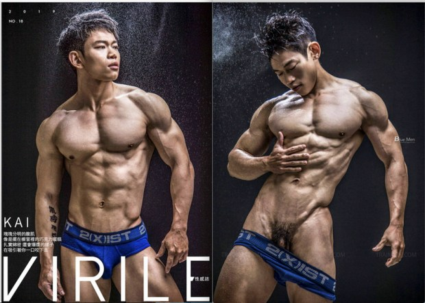 VIRILE 18 | ( Ebook+ Videos )