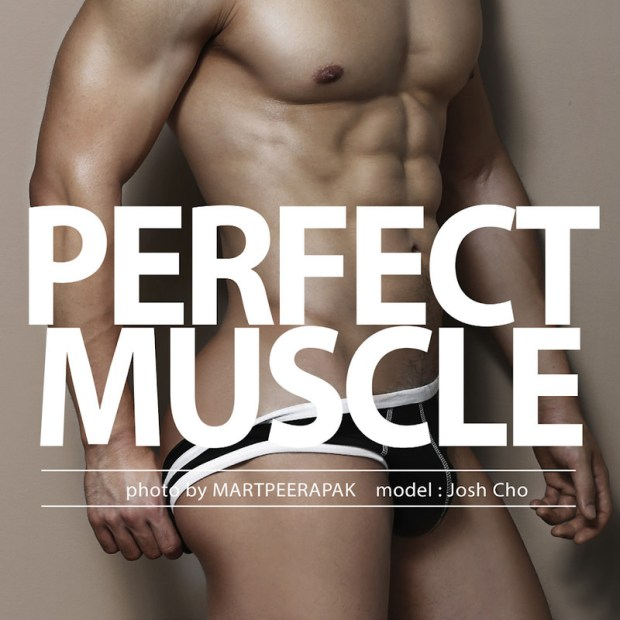 Mart – Perfect Muscle