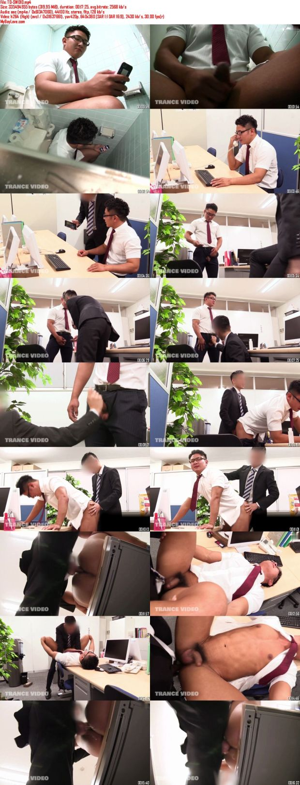 TRANCE VIDEO – TO-SW010 – 男子社員職務猥褻 Part10