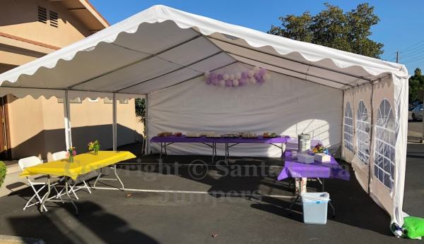 fancy party tent