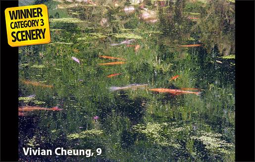vivien cheung
