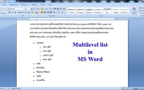 Multilevel list in MS Word