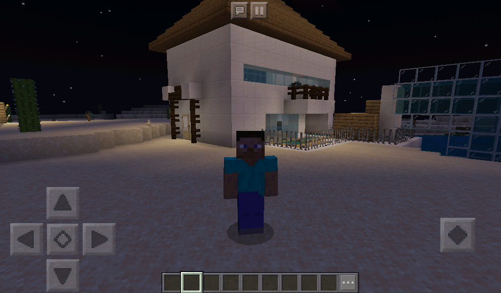 Minecraft Stevve outside his house